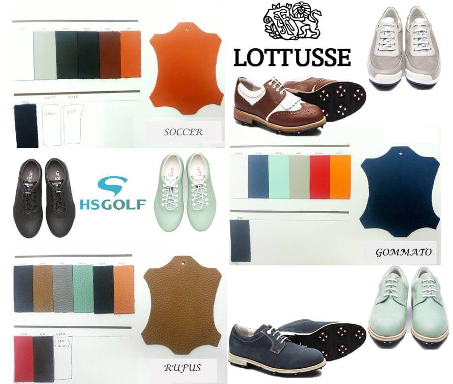Lottusse shoe 2017